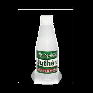 juthera-petit